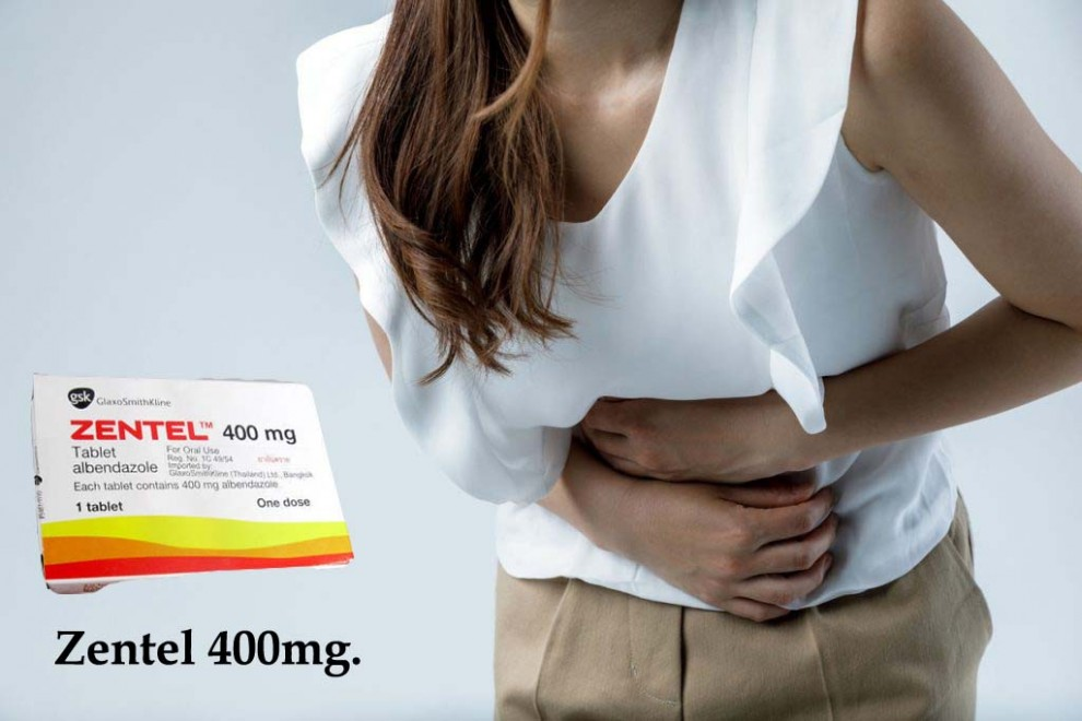 Zentel 400mg Tablets to treat worm infection